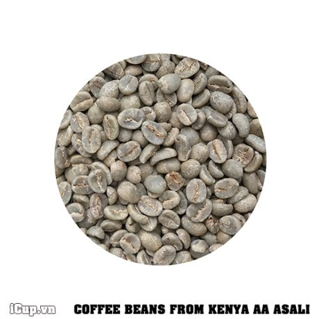 Cà phê đặc sản nhân sống Kenya AA Asali