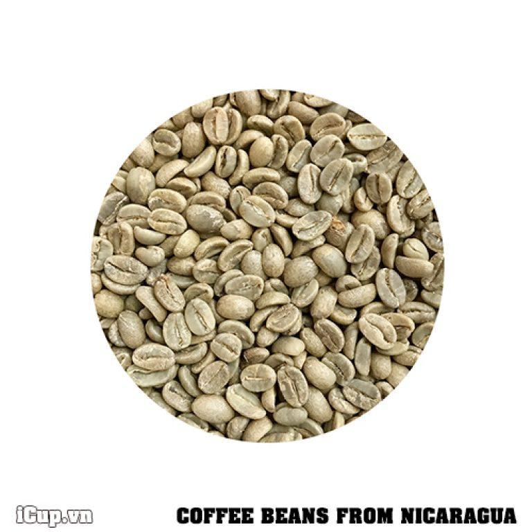 Cà phê hạt Nicaragua - Jinotega chưa rang