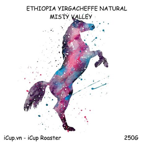 Cà phê Ethiopia Narutal Misty Valley - 250g iCup Roaster