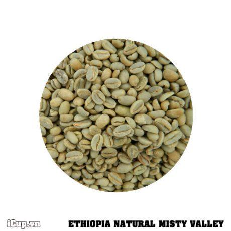 Cà phê nhân sống Ethiopia Misty Valley chế biến khô - 1kg
