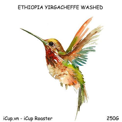 Cà phê Ethiopia Yirgacheffe chế biến ướt - 250g iCup Roaster