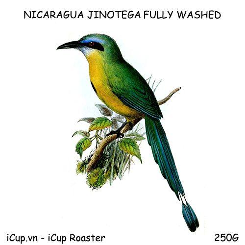 Cà phê Nicaragua fully washed - 250g iCup Roaster