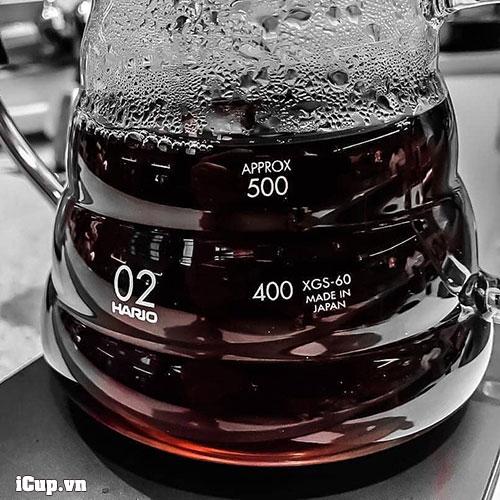 Bình đựng cà phê thuỷ tinh hoàn hảo Hario XGS-60TB