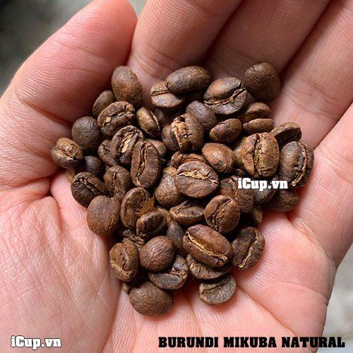 Cà phê Burundi Mikuba đã được rang