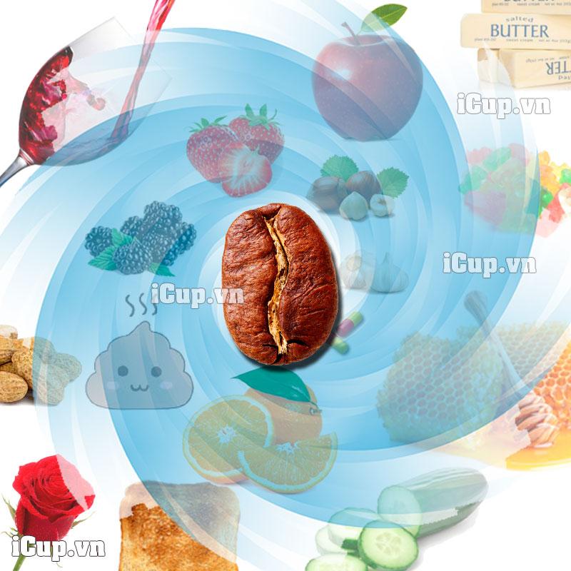 Cà-phê-có-mùi-gì-iCup.vn