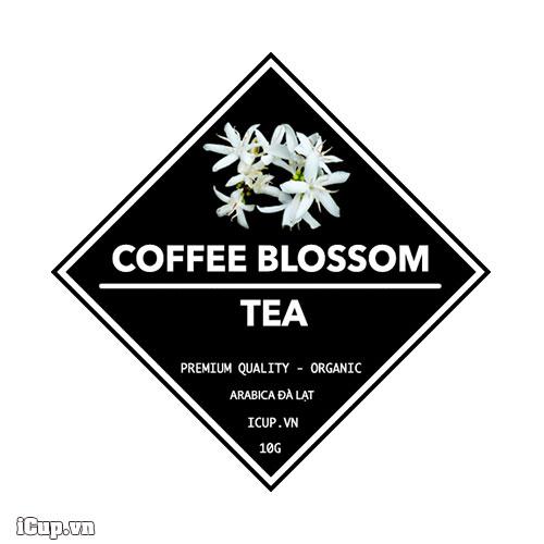 Trà hoa cà phê Arabica Đà Lạt
