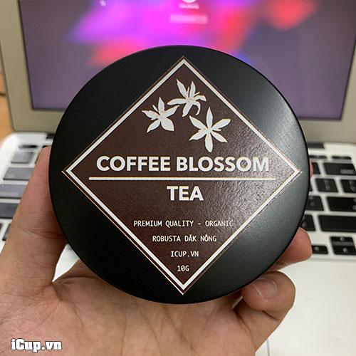 Hộp hoa cà phê Robusta 10g tại iCup.vn