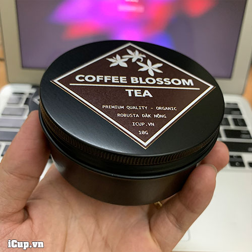 Trên tay hộp trà hoa cà phê Robusta khô