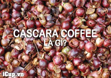 Cascara cofee là gì